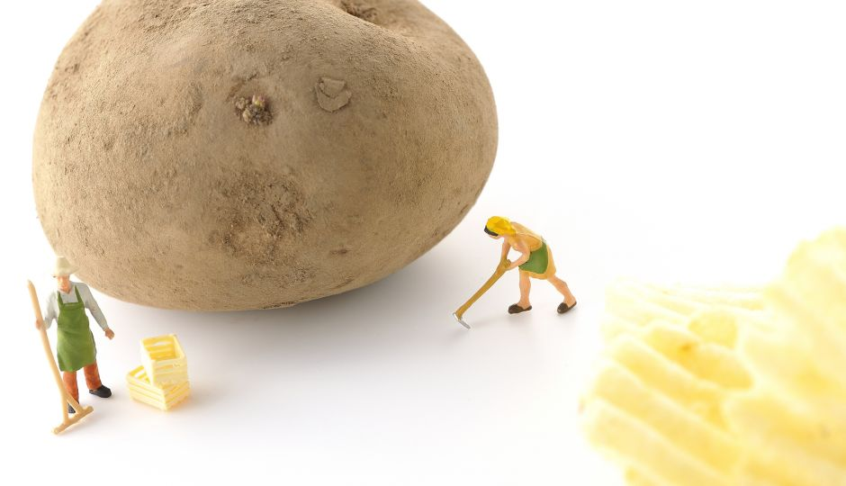 20年間変わらなかった!?日本の食料自給率「自給率30%台時代へ!」