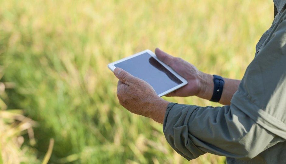 ITベンダが農業クラウドに参入!なぜクラウドと農業は相性が良いのか