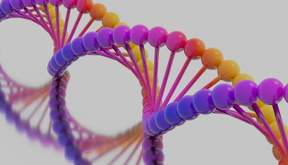 スパースモデリングやレボリューションCT:進化を続ける医療画像処理技術!