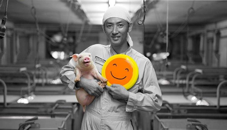 「もっと豚と接する時間を増やしたい。」IoT化で畜産のブレークスルーを目指す協同ファームの取り組みとは!?