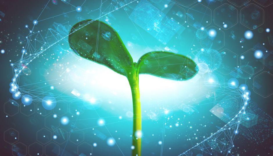 宇宙へとつながるアナログ技術:データの力で農業の効率化を目指すベンチャー企業PLANT DATA