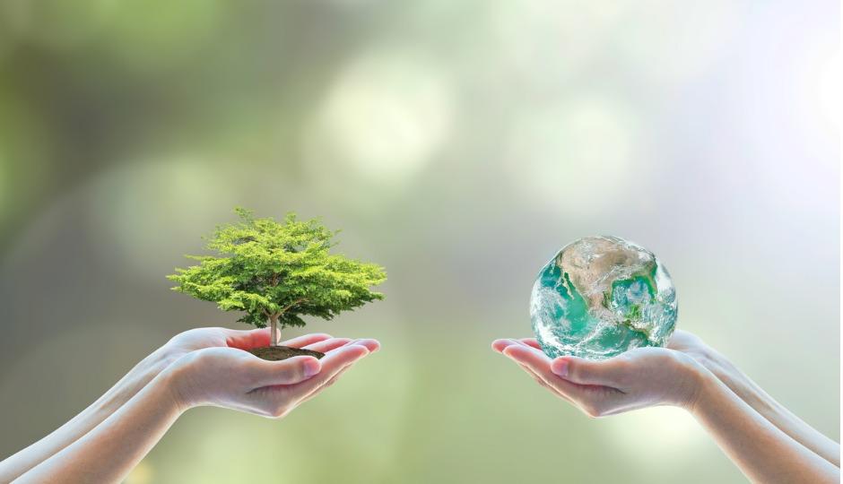 実は生活に密着している!?なぜ今「ESG投資」が注目されているのか?