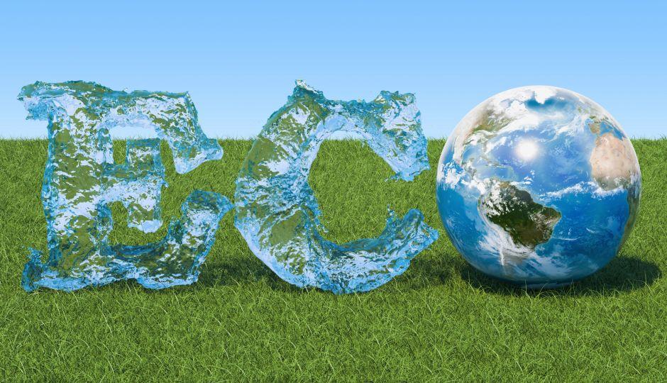 徹底解説!ビジネスにおける「エコシステム」とは?自然も事業も関係性が大切!?