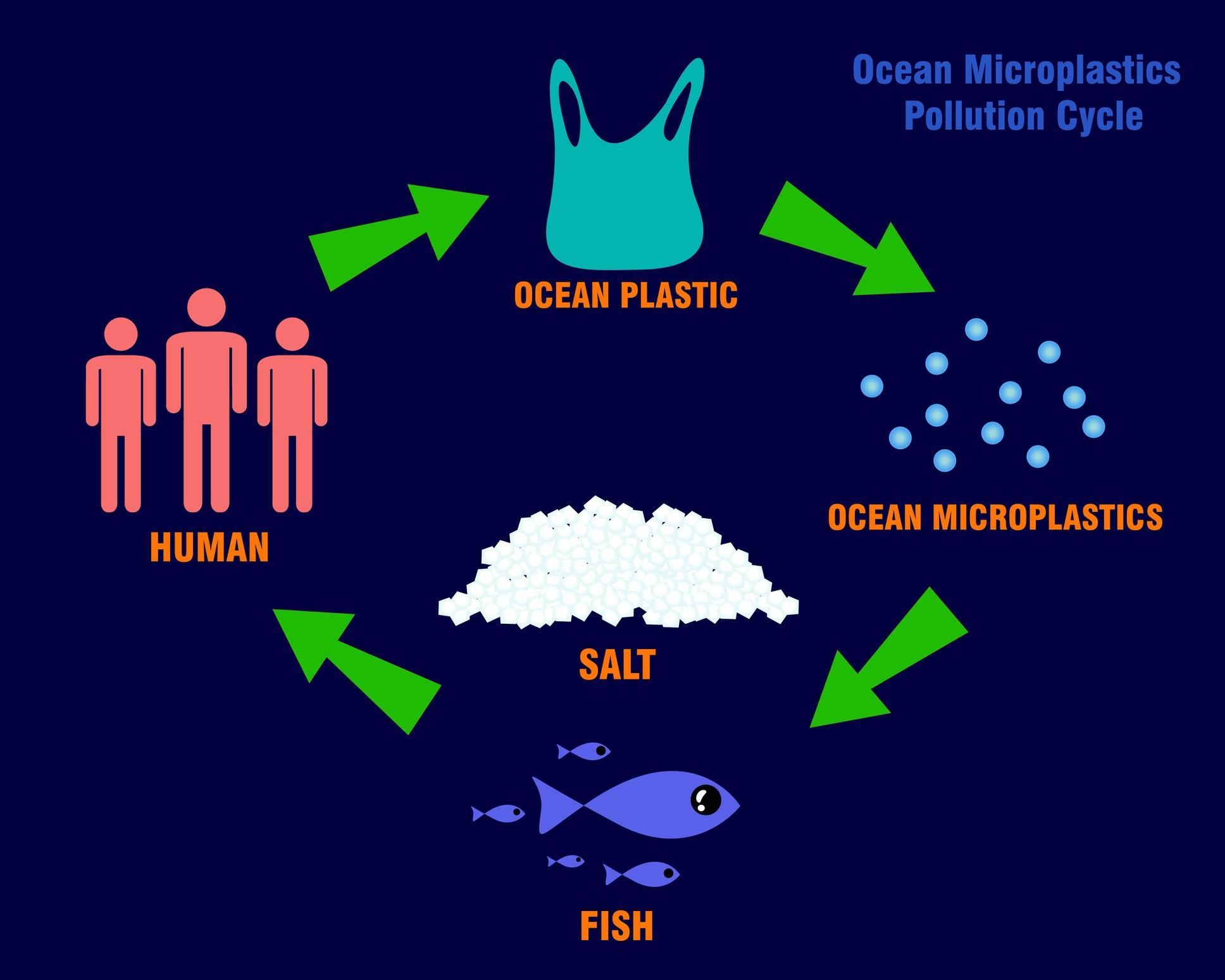 マイクロ プラスチック