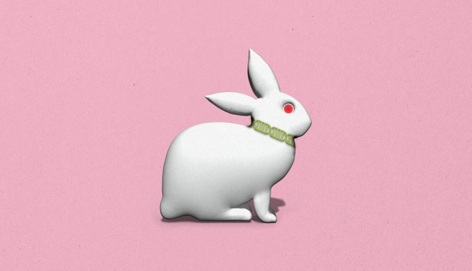 ウサギの置物からメガネまで、DNAを活用してモノを記録媒体として活用する新技術「DNA of Things(DoT)」とは?